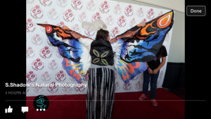 Mothra cosplay