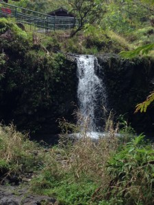 Another waterfall and pool on Maui