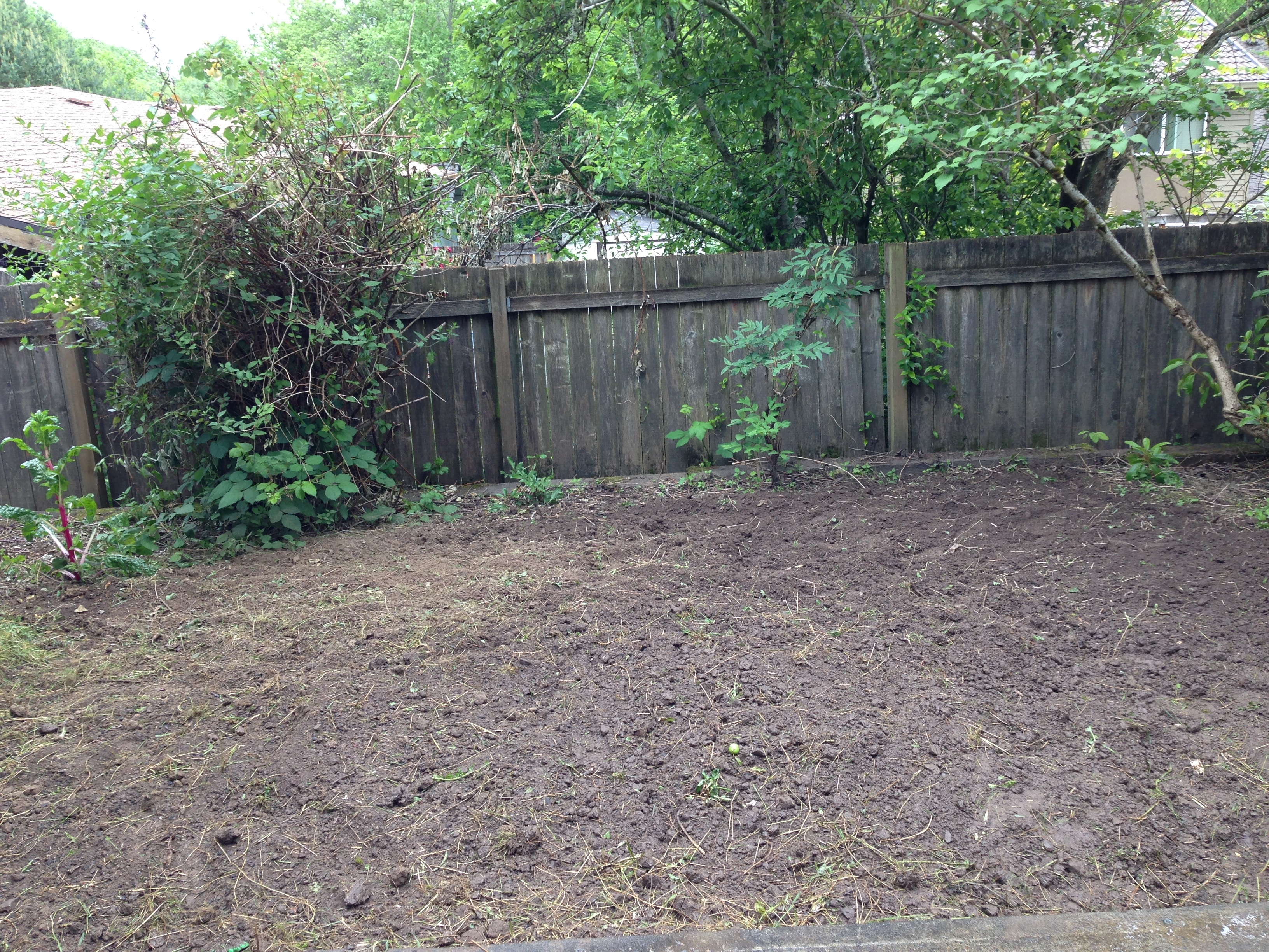 A Nerd In The Garden: Designing A Raised Bed Layout