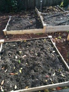 Vegetable garden ready for winter